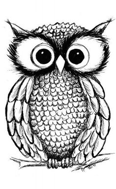 This owl is so cute! I really would love to get an owl tattoo Owl Illustration, Illustrations, Owl Art, Cute Owl, Doodle Art, Owl Doodle, Painting & Drawing, Coloring Pages, Colouring