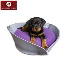 Hundebett Welpen  Hier kommt Nook, dass kuschelige Hundebett für Welpen und kleine Hunde. Flausch Fleece, eine geräuschlose, komfortable Füllung und das entzückende Design verwandeln das Hundebett in einen ganz besonderen Schlafplatz.