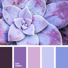 Bedroom Paint Color Schemes and Design Ideas Purple Color Palettes, Pastel Palette, Colour Pallette, Lilac Color, Color Combos, Orchid Color, Color Concept, Paint Color Schemes, Color Balance