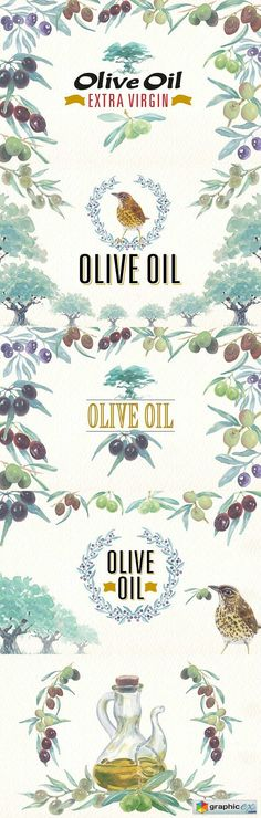Watercolor olive oil clipart  stock images