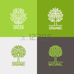 Vector set of linear icons and logo design elements in trendy mono line style - growth concepts, business emblems and signs - tree and bush labels. Stock Photo - 46725813