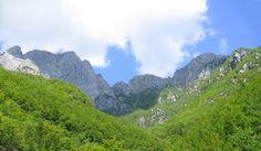 paesaggio montano (garfagnana)