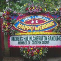 http://www.tokobungapedia.com/p/toko-bunga-di-sumedang-karangan-bunga.html