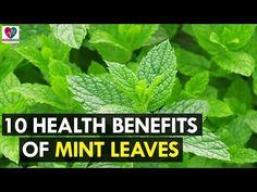 Health benefits of mints leaves