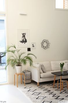 olohuone,viherkasvit,ryijymatto,moderni,vaalea puu