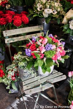Un Coeur en Provence: Prémices du printemps