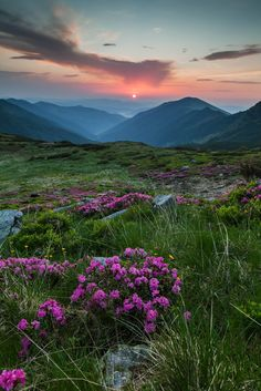 Rodnei Mountains National Park, Romania, www.romaniasfriends.com Sunset Landscape, Landscape Photos, Beautiful Places To Visit, Beautiful World, Visit Romania, Sea Photography, Country Landscaping, Spring Garden, Places Around The World