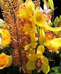 Send a beautiful yellow arrangement of flowers to symbolize happiness and friendship.