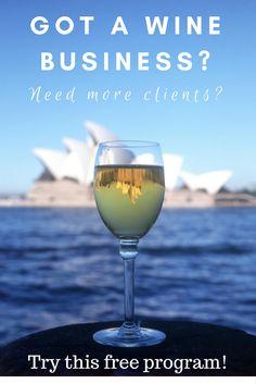 Fermented Lifestyle and Vinodiversity Wine Facts, Italian Wine, Western Australia, Sicily, Wine Recipes, White Wine, Wines, Alcoholic Drinks, Tours
