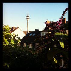 Gartenarbeit am Brückentag. by bilkorama, via Flickr