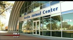 There's a 'cat crisis' at Austin animal shelters - http://austin.citylocalbuzz.com/theres-a-cat-crisis-at-austin-animal-shelters/