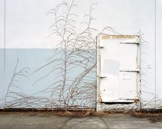 Urban Growth, Portland, Oregon - by Lauren Henkin