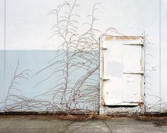 Urban Growth, Portland, Oregon - by Lauren Henkin