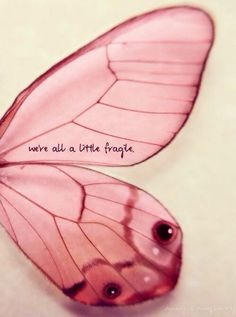 We're all a little fragile. Great Quotes, Quotes To Live By, Inspirational Quotes, Simple Quotes, Motivational Messages, Citations Disney, Words Quotes, Me Quotes, Qoutes