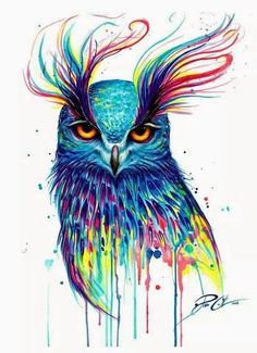 owl by Pixie Cold/ this owl is unimpressed