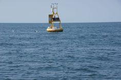 Lake Erie Islands Marine Forecast at igotfish.com