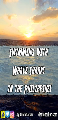 Swimming with While Sharks in the Philippines - read this and other tales at Dante Harker.com