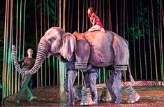 Running Wild review at Regent's Park Open Air Theatre – 'twice the heart of War Horse'
