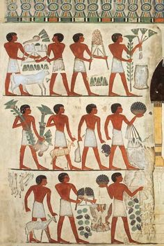 Tomb of Nakht and his wife Tawy Life In Ancient Egypt, Ancient Egyptian Religion, Egyptian Symbols, Ancient Art, Egypt Travel, Egypt Tourism, Indigenous Tribes, Luxor Egypt, African History