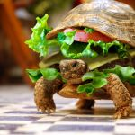 Turtle Burger? Hmm…