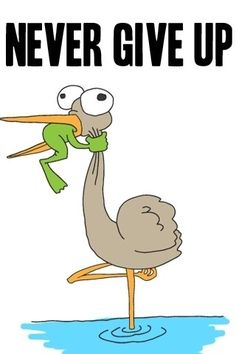 Never give up. I feel like that frog all the time !!!!
