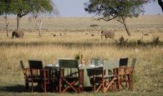 Bush Dinner, Masai Mara National Reserve, Kenya