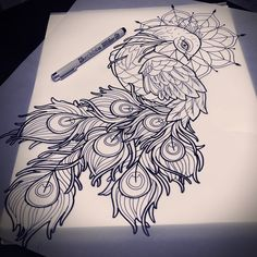 Gorgeous peacock                                                                                                                                                                                 Más