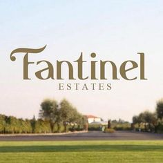 #Fantinel new web-site is now ONLINE! Visit it to discover our world… Keep up-to-date with all #wine news, events…  and much more!  www.fantinel.com
