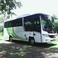 Sewa Bus Solo Seat 31