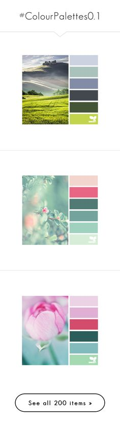 """""""#ColourPalettes0.1"""" by juromi ❤ liked on Polyvore featuring colors, backgrounds, design seeds, color palette, color scheme, color seeds, color palettes, pictures, pics and fillers"""