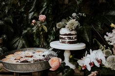 Lush floral elopement on the meadow Pinewood Weddings Industrial Wedding, Lush, Real Weddings, Catering, Marie, Wedding Decorations, Photos, Floral, Desserts