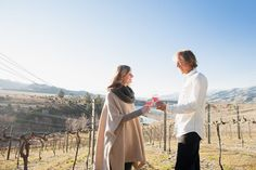 Experience some of New Zealands best wines with Wanaka Wine Tours. The Boutique Wine Tour is a half day tour visiting 4 boutique vineyards around Wanaka. South Island, Day Tours, Wines, New Zealand, Vineyard, Adventure, Boutique, Couple Photos, Couple Pics