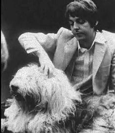 Paul McCartney with Martha My Dear