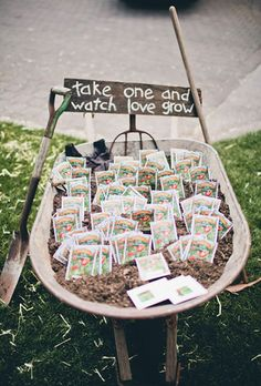 Budget-friendly seeds in a wheel barrow // The Complete Guide to Picking the Perfect Wedding Favour - Part 1