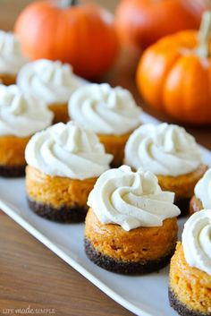 Since these are itty bitty, we can eat a whole bunch, right?? :-) Mini Pumpkin Cheesecakes with Gingersnap Crusts via Life Made Simple #fall #dessert