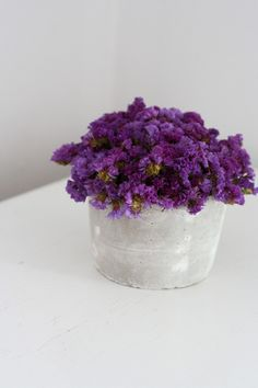 plum tuft modern dried flower arrangement by floresdelsol on Etsy, $35.00