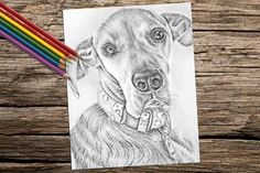 Printable coloring page adult coloring by ArtistrybyLisaMarie