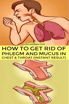 How to Get Rid of Phlegm and Mucus in Chest & Throat (Instant Result) Everyone has experienced obstruction in the nasal passage or throat that has resulted in difficulty in breathing and persistent coughing. This happens due to the increased phlegm in the Health Benefits, Health Tips, Health And Wellness, Health And Beauty, Health Fitness, Health Care, Fitness Men, Exercise Benefits, Holistic Nutrition