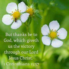 1 Corinthians 15:57 KJV