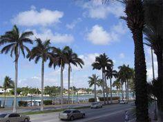 Latino-americanos ricos salvam mercado imobiliário de Miami