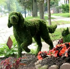 Dog Topiary, aahhh too cute!!! In honor of the best, best friend anyone could have.