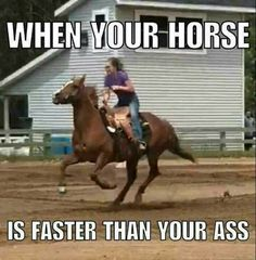 - Horses Funny - Funny Horse Meme - - The post appeared first on Gag Dad. Funny Horse Memes, Funny Horse Pictures, Funny Horses, Cute Horses, Funny Animal Memes, Funny Animals, Funny Memes, Hilarious, Equestrian Memes
