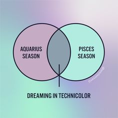 Pisces Season Tip #37: Don't get stuck on the astral plane ✨ What planet (or house) does dreamy Pisces make magic in your chart? Find out in the app for free! ➡️ bit.ly/sanctuary-links Aquarius Season, Astral Plane, Pisces, Planets, Chart, Magic, App, Seasons, Photo And Video