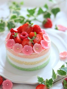 ひなまつりネイキッドケーキ by なつみ | cotta