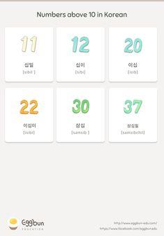 🇰🇷Numbers above 10 in Korean Chat to Learn Korean with Eggbun! Korean Verbs, Korean Phrases, Korean Quotes, Hangul Alphabet, Korean Alphabet, Learn Basic Korean, How To Speak Korean, Korean Words Learning, Korean Language Learning
