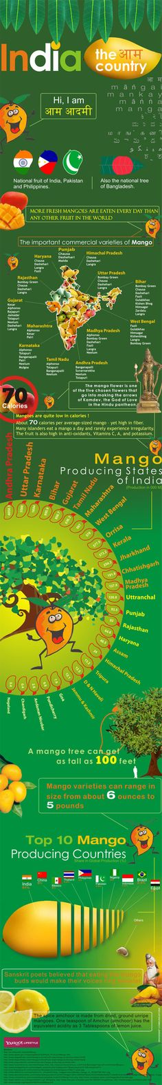 Mango Mela - A mango-licious graphic packed with trivia we bet you never knew!