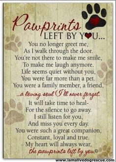 Paw prints on my heart:  For our dear lost pet. Beautiful