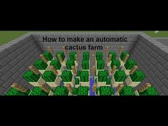 How to make an automatic cactus farm on Minecraft