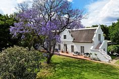 Manor house of old farm near Cape Town, SA. South African Homes, African House, Cape Dutch, Dutch House, Provence Style, Facade House, Country Estate, Old Farm, Global Home