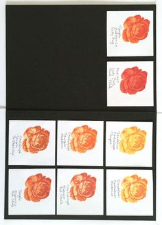Creadin: Color Combinations for Layered Stamps